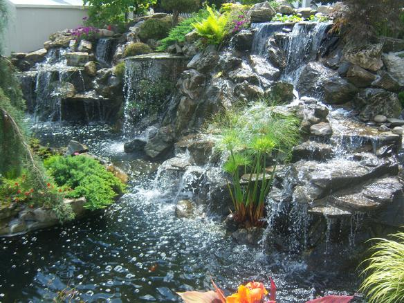 Ponds by tom serving nassau and suffolk counties for Custom koi ponds